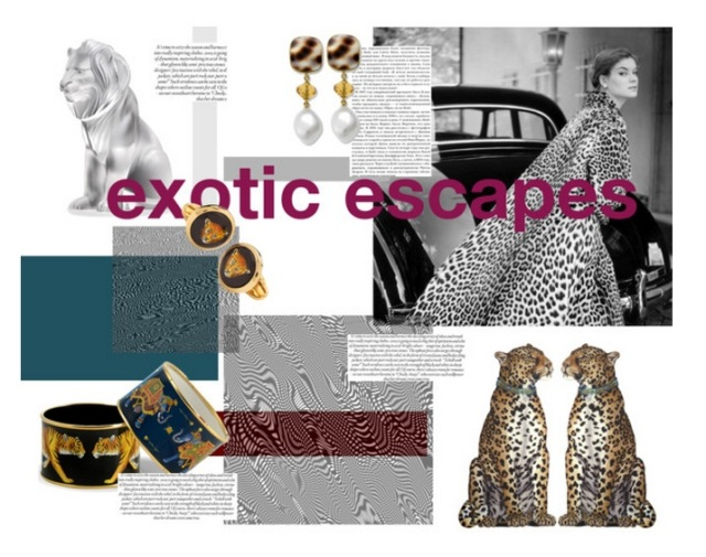 exotic escapes polyvore scully & scully